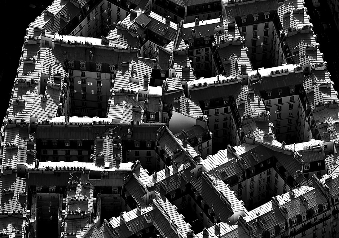 03 Behind the facades, the voids as generators of survival